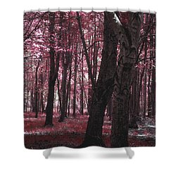 Shower Curtain featuring the photograph Artistic Tree In Pink by Michelle Audas