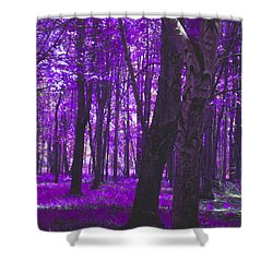 Shower Curtain featuring the photograph Artistic Tree In Purple by Michelle Audas