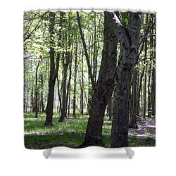 Shower Curtain featuring the photograph Artistic Tree Original by MicA