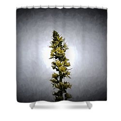 Shower Curtain featuring the photograph Artistic Yellow Flowers And Buds by Leif Sohlman