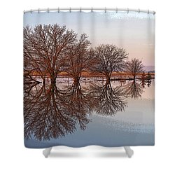 Artistic Fancy Shower Curtain