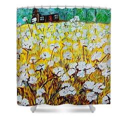 Cotton Fields Back Home Shower Curtain by Eloise Schneider
