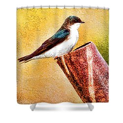 Male Tree Swallow No. 2 Shower Curtain
