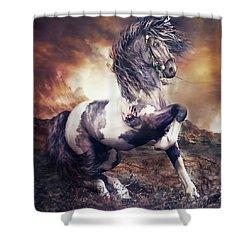 Apache War Horse Shower Curtain