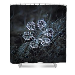 Shower Curtain featuring the photograph Icy Jewel by Alexey Kljatov