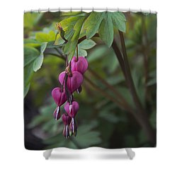 Heart Focused Shower Curtain by Karen Casey-Smith