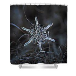 Shower Curtain featuring the photograph Snowflake Photo - Steering Wheel by Alexey Kljatov