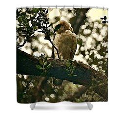 Io - Hawaiian Hawk Shower Curtain