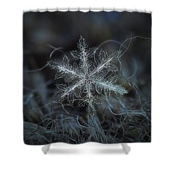 Shower Curtain featuring the photograph Leaves Of Ice by Alexey Kljatov