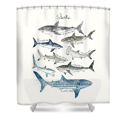 Sharks Shower Curtain by Amy Hamilton