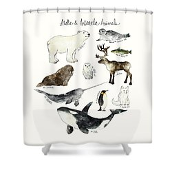Arctic And Antarctic Animals Shower Curtain by Amy Hamilton