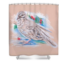 Winter Mourning Dove Shower Curtain by MM Anderson