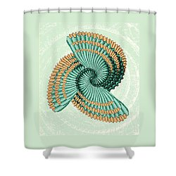 Octopus Shell Abstract Shower Curtain by Deborah Smith
