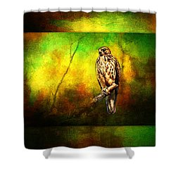 Hawk On Branch Shower Curtain