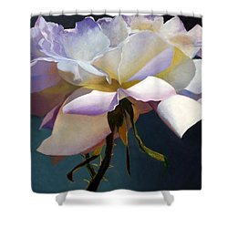White Rose Of Eden Shower Curtain