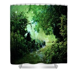 Magical Tranquility Path Shower Curtain