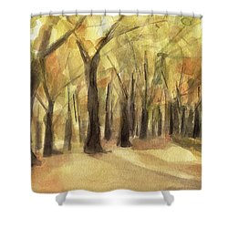 Autumn Leaves Central Park Shower Curtain