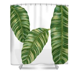 Rainforest Resort - Tropical Banana Leaf  Shower Curtain