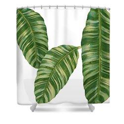 Rainforest Resort - Tropical Banana Leaf  Shower Curtain
