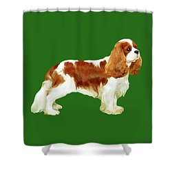 Cavalier King Charles Spaniel Shower Curtain by Marian Cates
