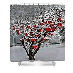 Shower Curtain featuring the photograph Enduring Heart by DJ Florek
