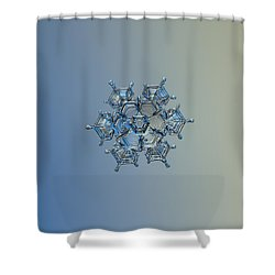 Snowflake Photo - Flying Castle Alternate Shower Curtain