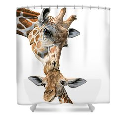 Mother And Baby Giraffe Shower Curtain by Sarah Batalka