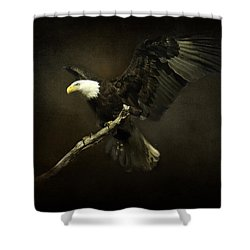 Under His Wings Shower Curtain by Eleanor Abramson