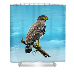 Congo Serpent Eagle Shower Curtain