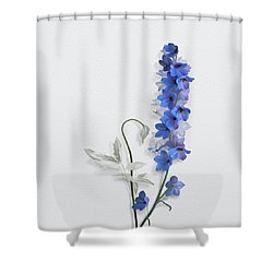 Consolida Shower Curtain by Ivana Westin