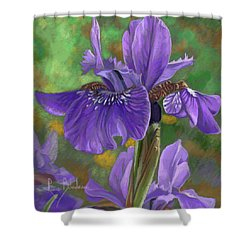 Irises Shower Curtain by Lucie Bilodeau