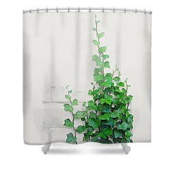 Vines By The Wall Shower Curtain