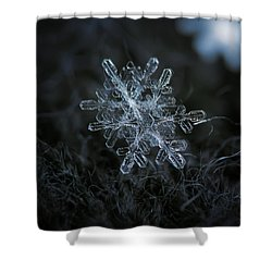 Shower Curtain featuring the photograph Snowflake Of January 18 2013 by Alexey Kljatov