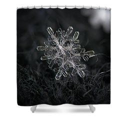 Snowflake Photo - January 18 2013 Grey Colors Shower Curtain