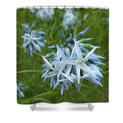 Star-spangled Flowers Shower Curtain