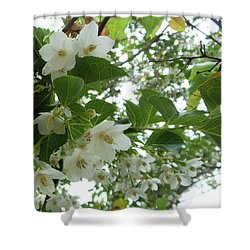 Snowbell Sparkles In Spring Shower Curtain