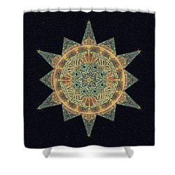Shower Curtain featuring the drawing Life Star Mandala by Deborah Smith