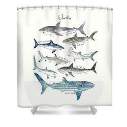 Sharks - Landscape Format Shower Curtain by Amy Hamilton