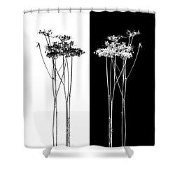 Organic Enhancements 7 Shower Curtain