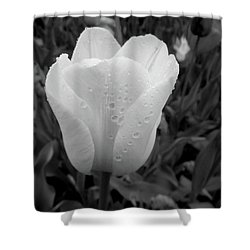 Pure Triumph Tulip Shower Curtain