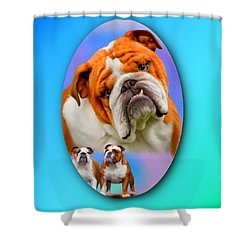 English Bulldog- No Border Shower Curtain