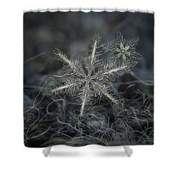 Stars In My Pocket Like Grains Of Sand - Grey Version Shower Curtain