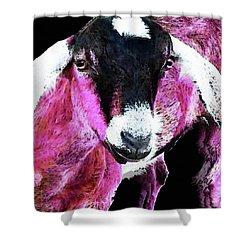 Pop Art Goat - Pink - Sharon Cummings Shower Curtain by Sharon Cummings