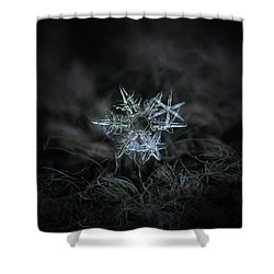 Snowflake Of 19 March 2013 Shower Curtain