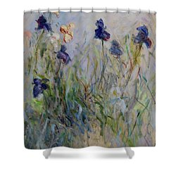 Blue Irises In The Field, Painted In The Open Air  Shower Curtain