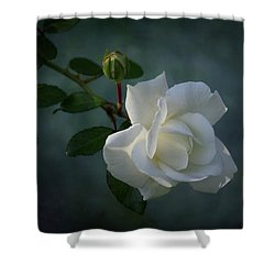 The Encouragement Of Light Shower Curtain by Karen Casey-Smith