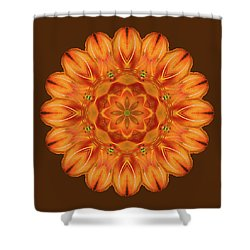 Selu's Song Shower Curtain by Karen Casey-Smith