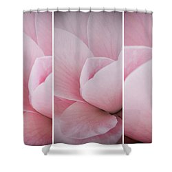 Shower Curtain featuring the photograph The Sum Of The Parts by Linda Lees