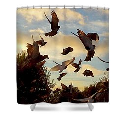 Birds And Fun At Butler Park Austin - Birds 1 Shower Curtain