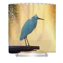 Birds And Fun At Butler Park Austin - Birds 3 Detail Macro Shower Curtain by Felipe Adan Lerma